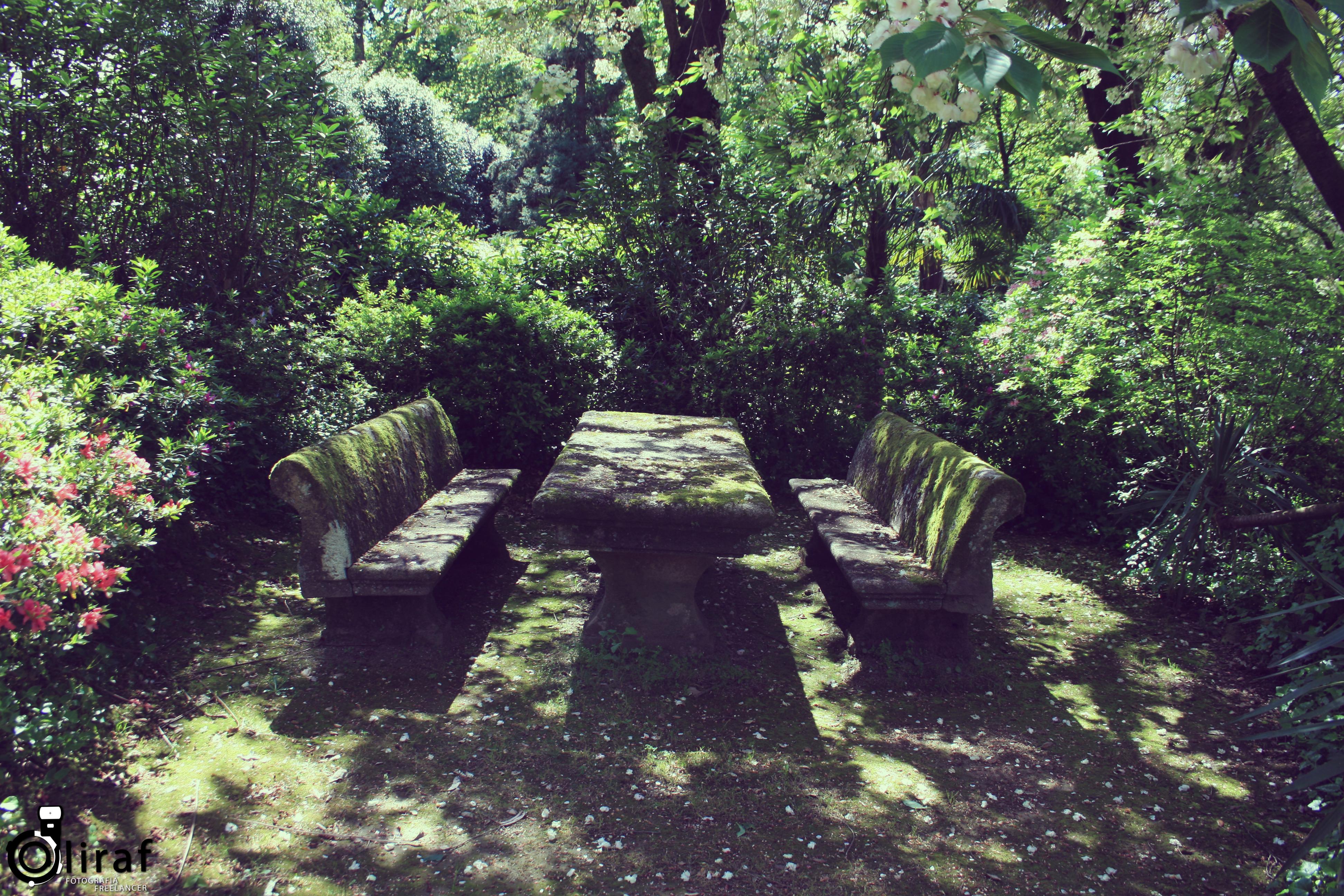 Quinta da Aveleda (12)